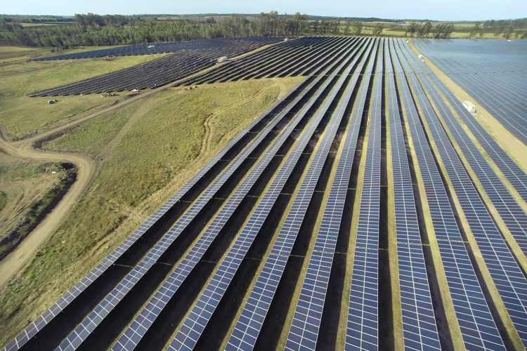 FRV awarded a 300 MW solar project in Mexico's second electricity market auction